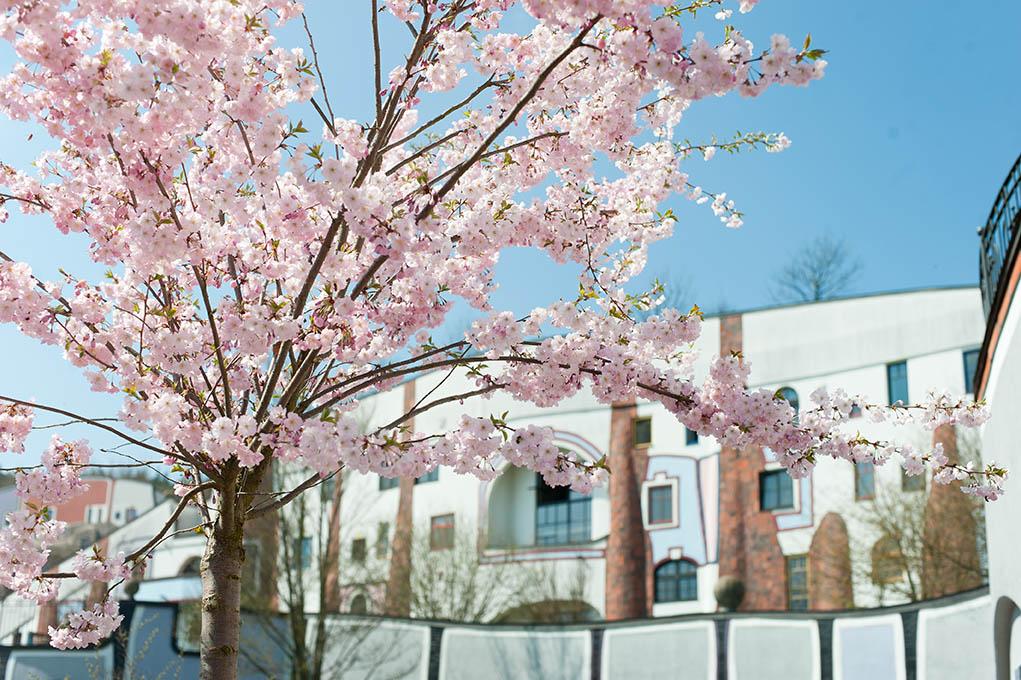 Frühling © Rogner Bad Blumau