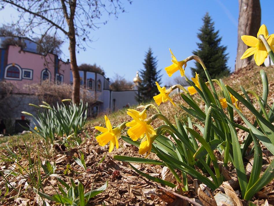 Frühlingsimpressionen 2020 © Rogner Bad Blumau